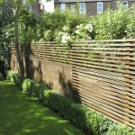 Fence and Box Hedging